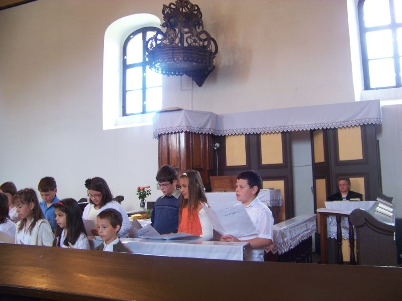 evzaro-2012-024